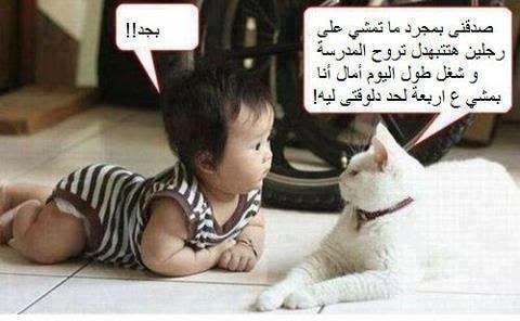 ياسلام سلم البسة بتتكلم هههههههههه 537030_368961536536314_448308939_n