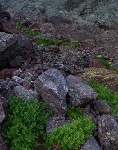Un versant complexe de blocs volcaniques...