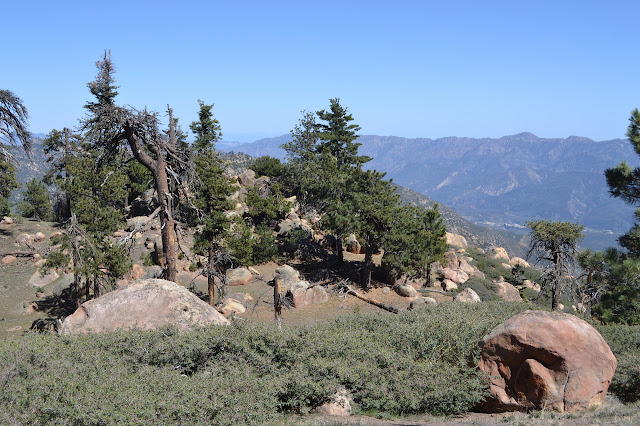 outcrop of rocks down the east side of Haddock Peak