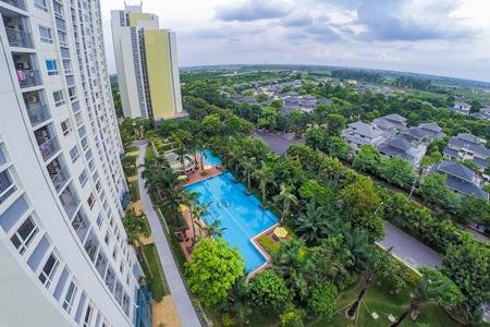 View từ căn hộ Rừng Cọ xuống Vườn Tùng