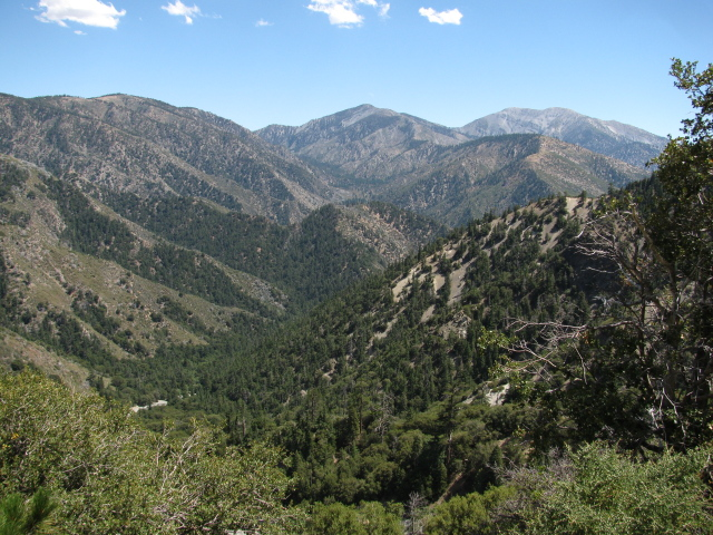 a look down Vincent Gulch to Mount Baldy