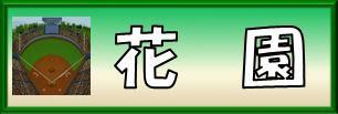 東大阪市・花園中央公園野球場