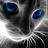 Coral Soar avatar image