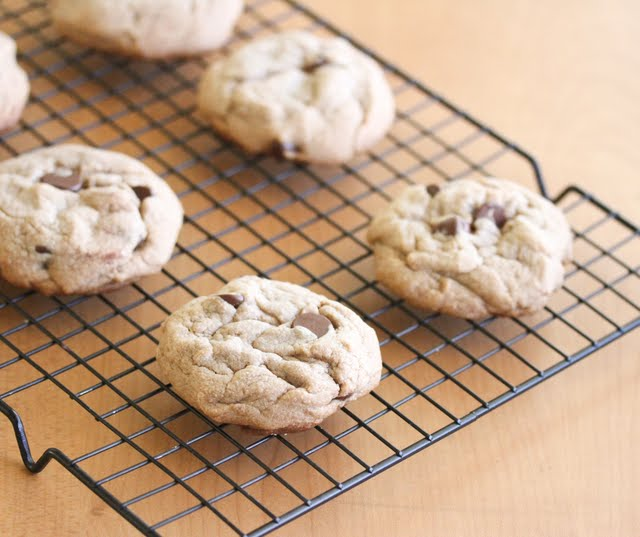 close-up photo of cookies on a rack