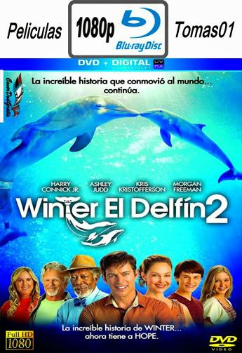 La Gran Aventura de Winter el Delfín 2 (2014) BRRip 1080p