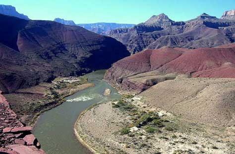 Cañón del Colorado, río