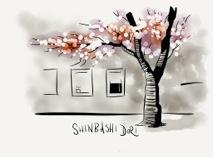 CherryTreeinBloomfrompaper-2012-04-20-16-35.jpg