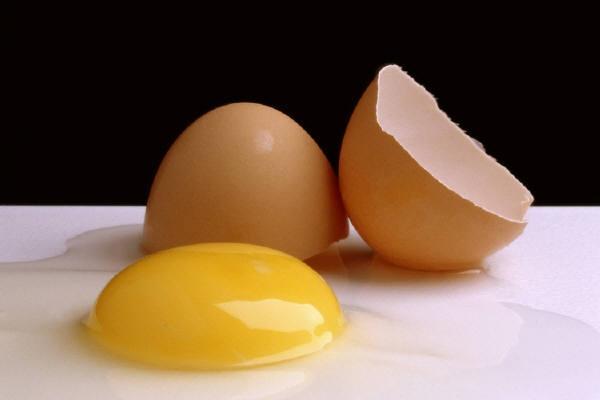 Berikut 8 Perbedaan Telur Ayam dan Telur Bebek, Diantara 2 Telur Tersebut Anda Lebih Memilih Yang Mana?
