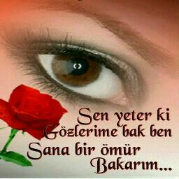 adem turkmen
