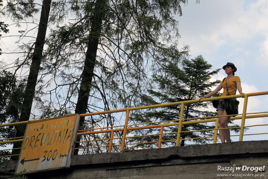 Wisła - most widokowy na wodospad