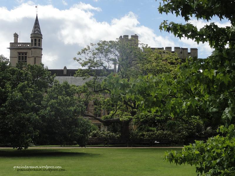 passeando - Passeando até à Escócia! - Página 10 DSC00642