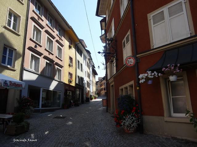 passeando - Passeando pela Suíça - 2012 - Página 14 DSC04927