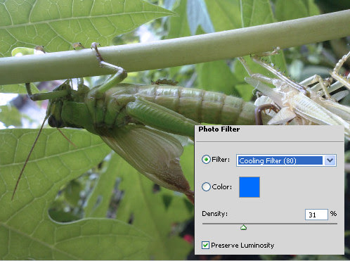 Photo Filter