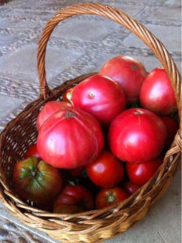 Pelando tomates y teniendo sexo en la cocina nuevo