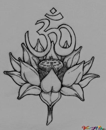 hoa sen 3d bằng bút chì