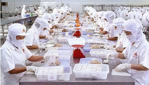 Đơn hàng chế biến thực phẩm cần 3 nữ thực tập sinh làm việc tại Kagawa Nhật Bản tháng 04/2016