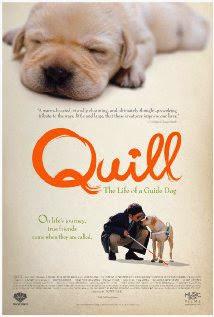 Chú chó QUILL