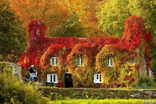 thơ hay cảnh đẹp mùa thu