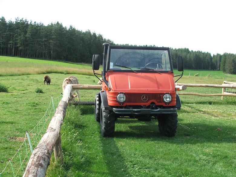 421 140 cabrio DSCF6409