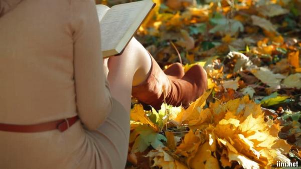 ảnh cô gái đang làm thơ dưới trời thu