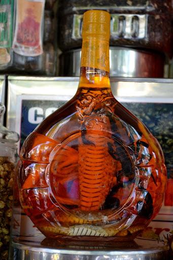 Заспиртованная змея