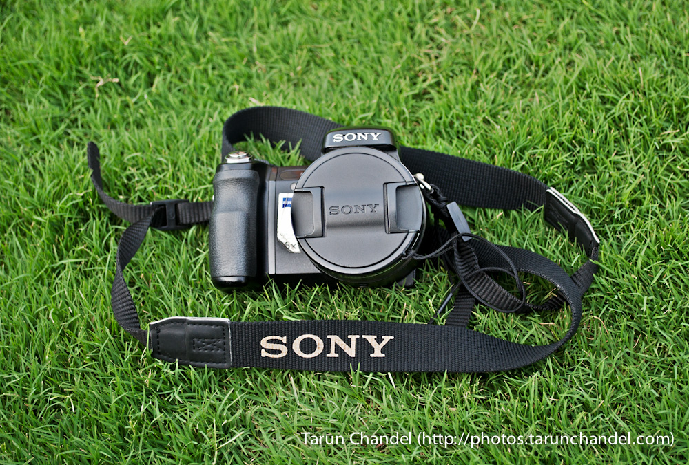 Sony DSCH-7 Old Buddy, Tarun Chandel Photoblog