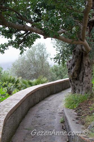 Capri kıyısındaki yürüyüş yolu