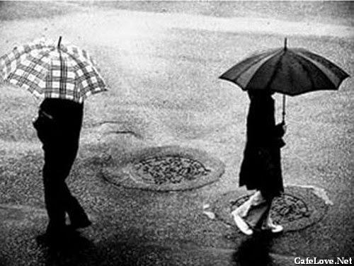 Hình ảnh gặp người yêu cũ trong mưa nhưng không nói gì