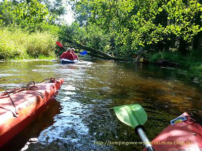 Na zdjęciu przeszkoda podczas spływu kajakowego Czernicą