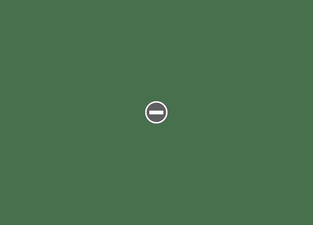 [Tuto] utilisation lame GEM dans les SE type Valets IMG_0877%2B%28Custom%29
