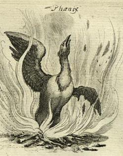 phoenixgriffon--Matthaus-ConvertImage.jpg