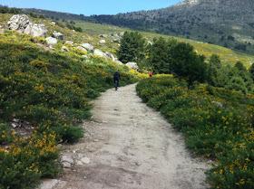 Bajada a Cercedilla desde el Alto del León
