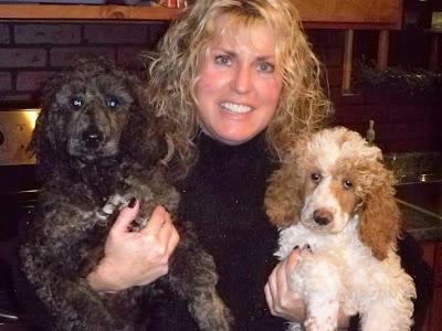 Past Puppies - Shyre Poodles