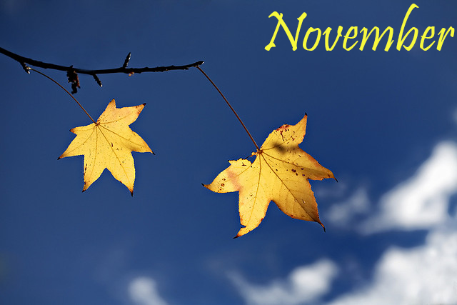 Những bài thơ hay tháng 11, tình thơ tháng mười một