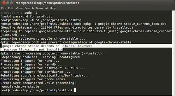 Google-Chrome install
