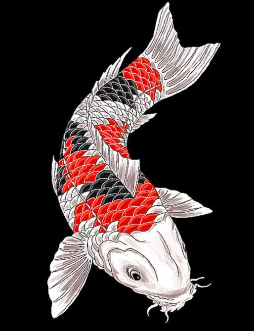 Koi Tattoo Design by gaikotsu91 on DeviantArt