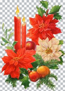 Myst~2    aircm~unkn_Christmas09a-card_Sm.jpg