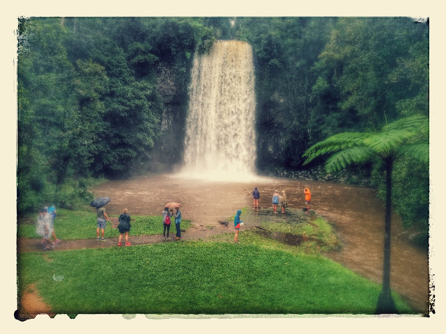 Millaa Milla Waterfalls of Australia