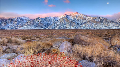 Manzanar, Mount Whitney, California.jpg