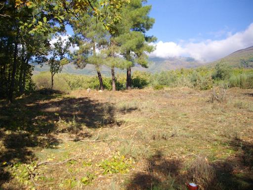 Finca Rùstica, zona de Arenas de San