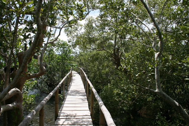 how to build a raised boardwalk