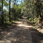 Dubbo Gully Rd management trail (166922)