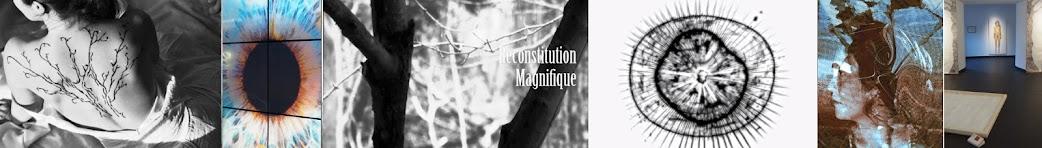 RECONSTITUTION MAGNIFIQUE