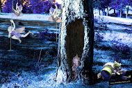 Duendes jugando en el bosque
