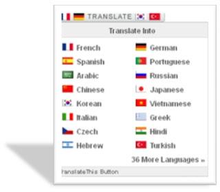 translator widget,translator gadget,widget penerjemah,website translator,site translator,widget terjemah,widget blogger,widget