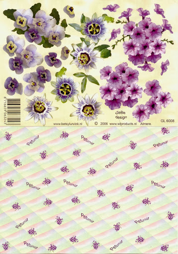 GL 6008 Betsy Lurvink-bloemen+achtergrond.jpg