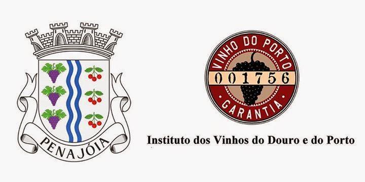 Junta de freguesia de Penajóia disponibiliza serviço de emissão do cartão de benefício pela internet