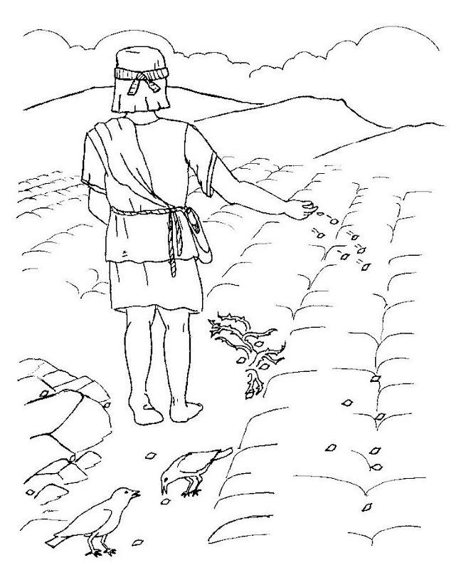 Parábola del sembrador para colorear