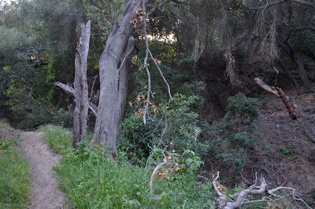 one steep sided gully