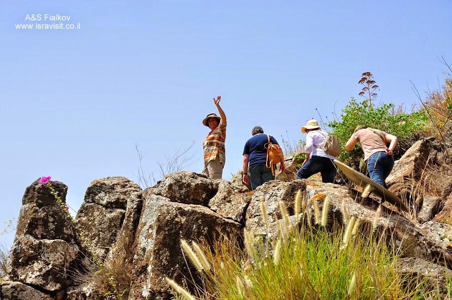Пешеходный маршрут. Гамла – древний еврейский город – крепость. Экскурсия по Голанским высотам. Гид в Израиле Светлана Фиалкова.